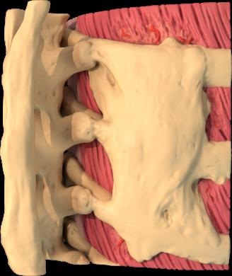 clinical-diganosis-header
